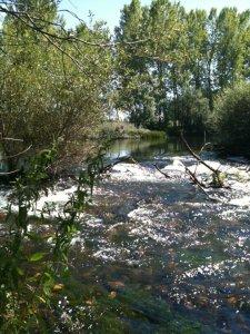 Mi mágico León: el hermoso río Esla a su paso por Cifuentes de Rueda, en la  provincia de León. León. Turismo rural.