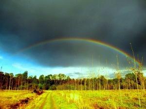 Mi mágico León: arco iris primaveral en Azadón. León.